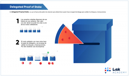 Delegated Proof Of Stake o Prueba de estaca delegadada Infografia